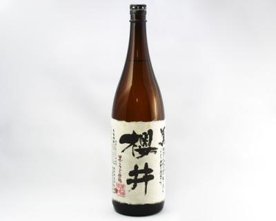 櫻井 Sakurai